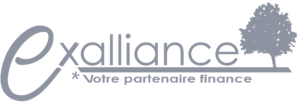 logo exalliance gris